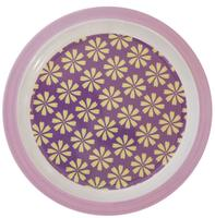 Flat plate from KIDS by FRIIS